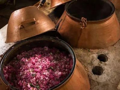 distiller perfume flower